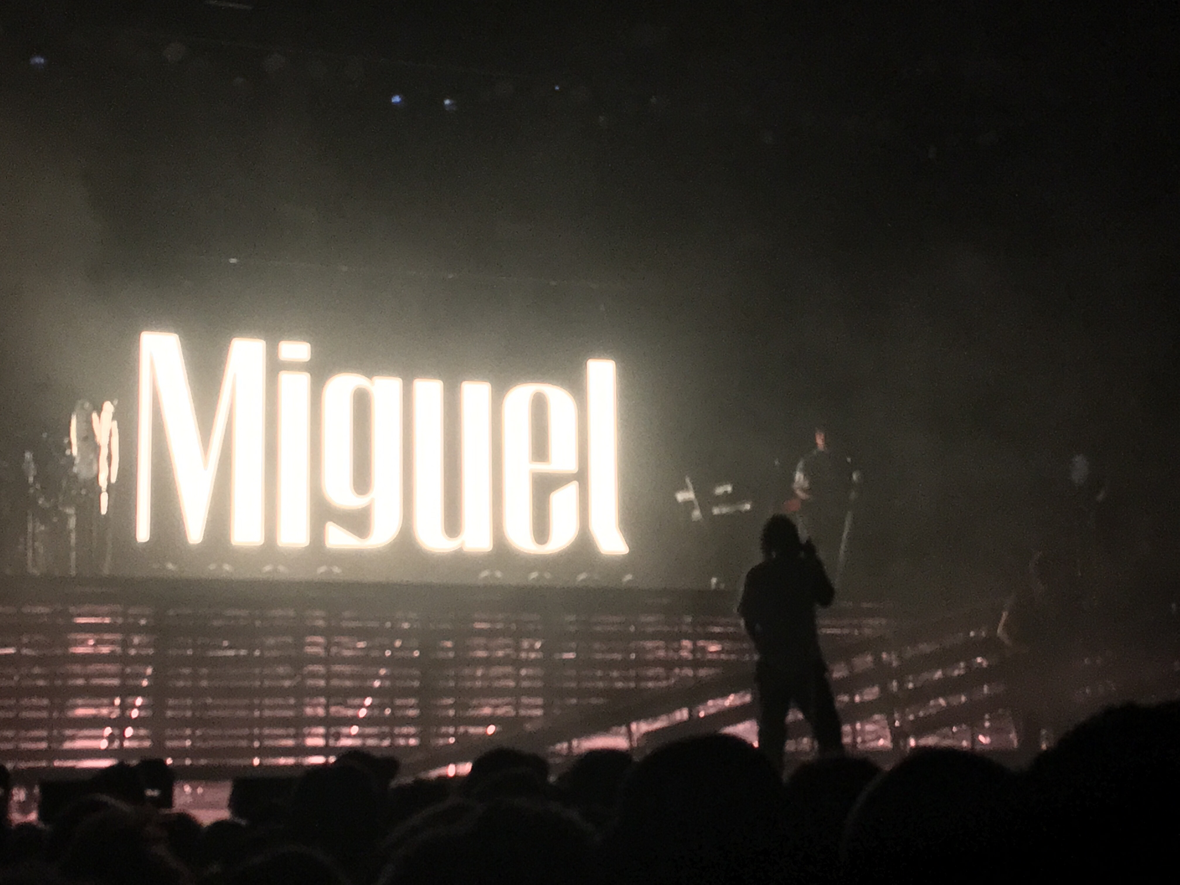 Still from the Miguel concert with his name in the background and the artist outlined in shadow
