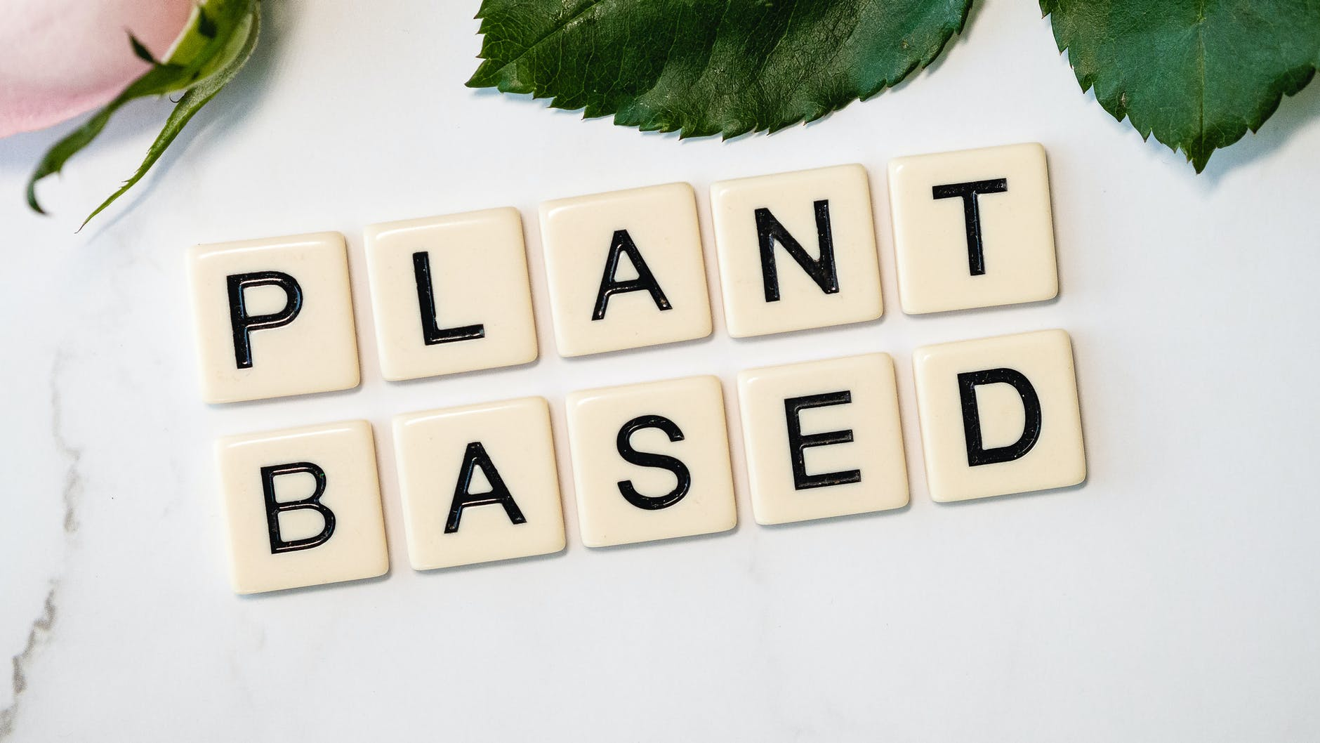 Scrabble letters that say plant based